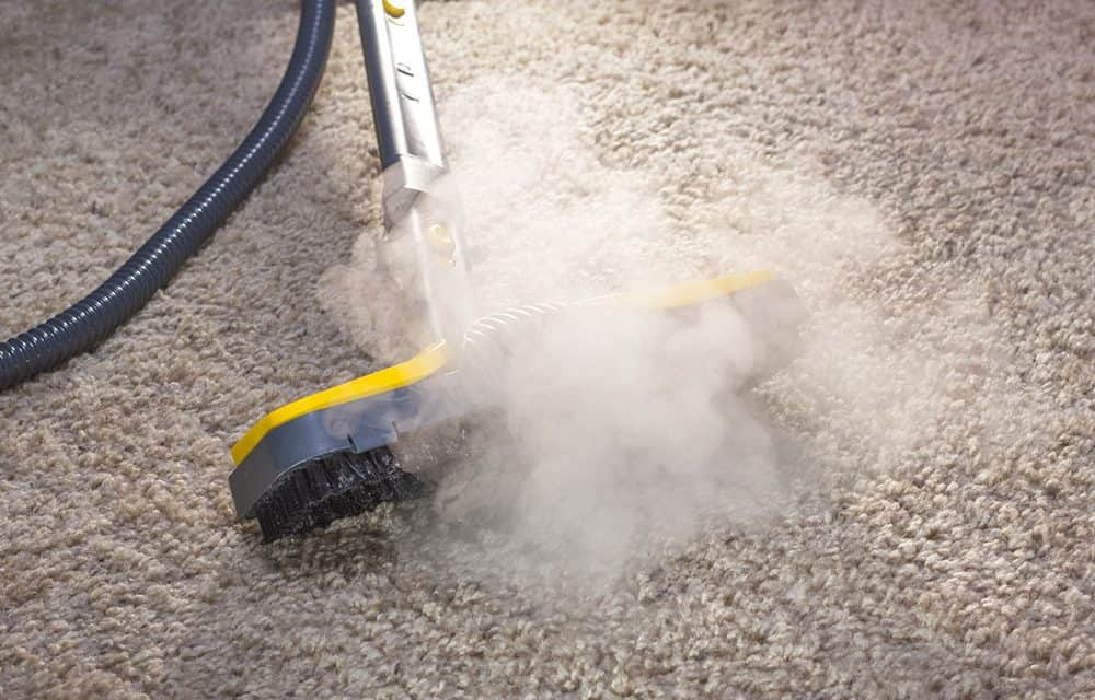Cleaning Cheese Spread in your Carpet
