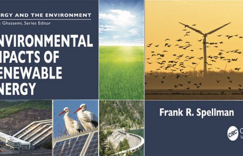 Renewable Energy and the Environment - Are They Related?