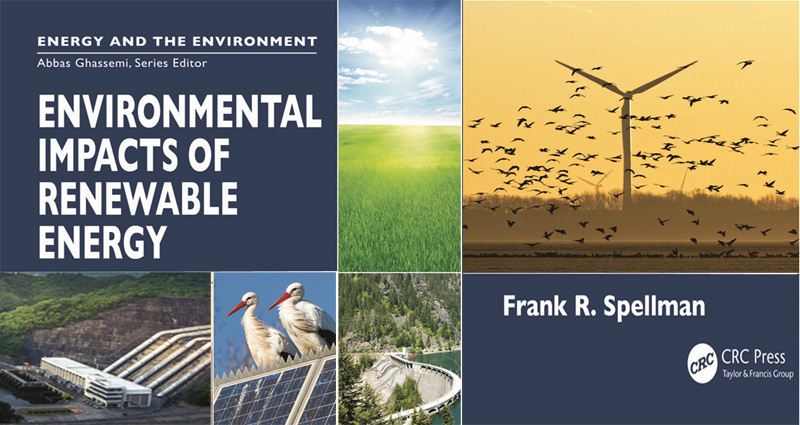 Renewable Energy and the Environment – Are They Related?